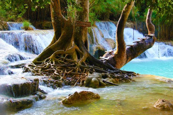 parc thailande