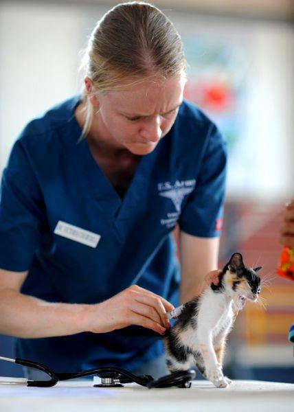 avantage du métier soigneur animalier